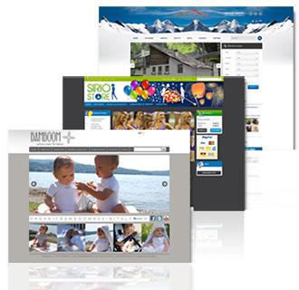 Realizzazione siti e-commerce Canavese
